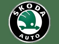 Skoda Car Servicing